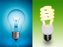 Incandescent light bulb & compact fluorescent light bulb