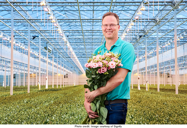 How Greenhouse Growers are Benefiting from LED Lighting