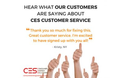 Why Our Customers Love CES
